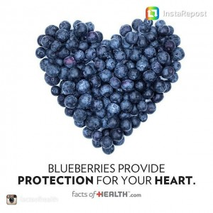 Our favorite way to eat blueberries lately is over steelhellip